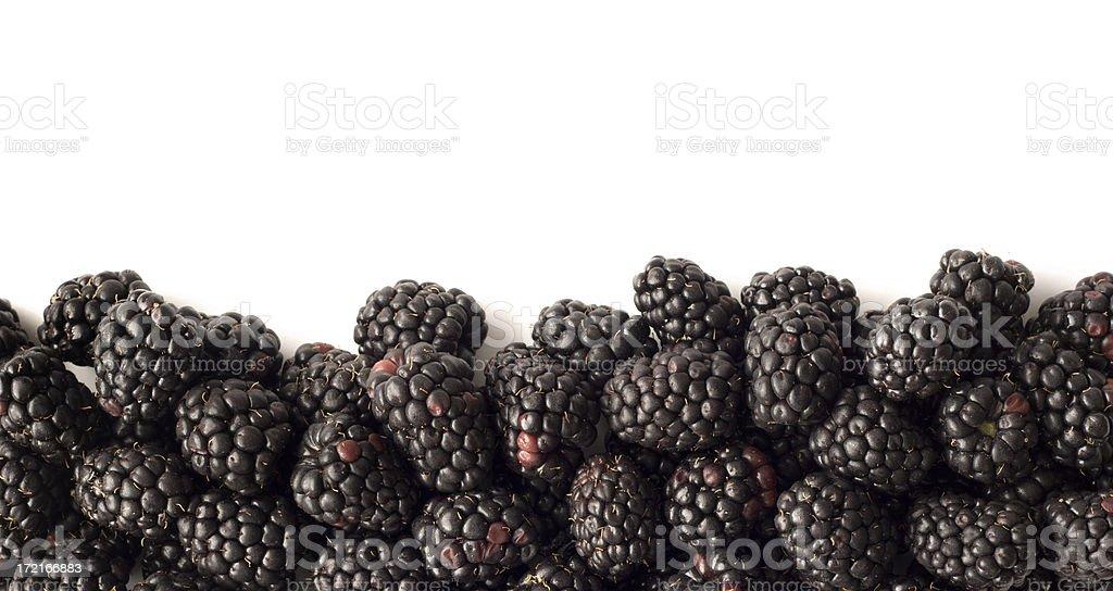 Blackberry Fruit, Fresh Food Bottom Border Frame on White Background royalty-free stock photo