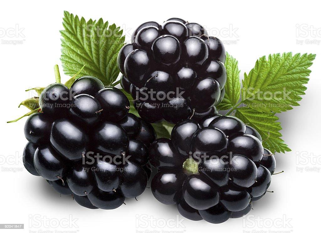 blackberry royalty-free stock photo