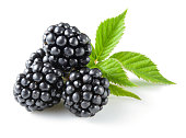 Blackberry with leaves isolated on white.