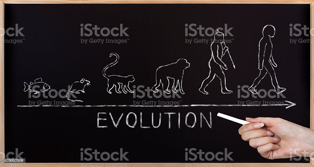 Blackboard Evolution stock photo