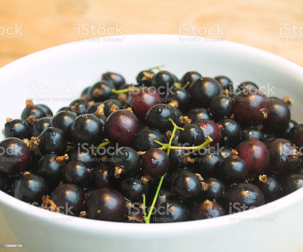 Blackcurrants in a white bowl royalty-free stock photo