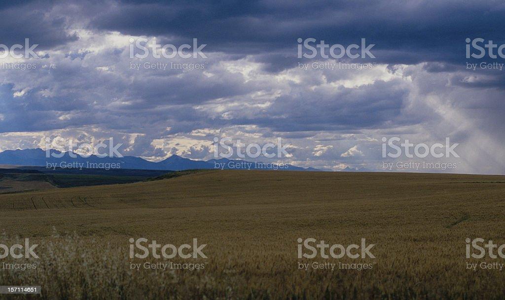 Blackfoot Nation Dry Farm royalty-free stock photo