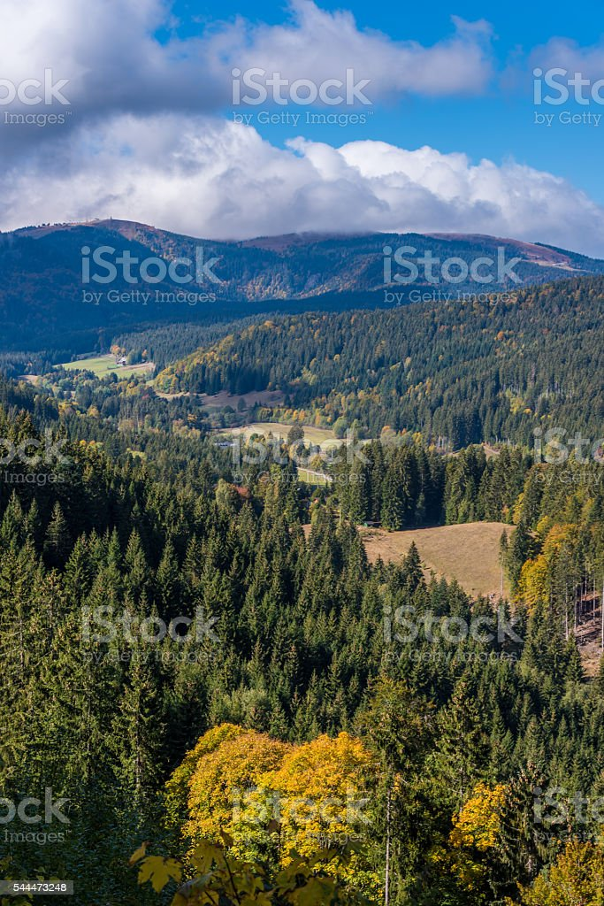 Blackforest close to Titisee in Germany stock photo