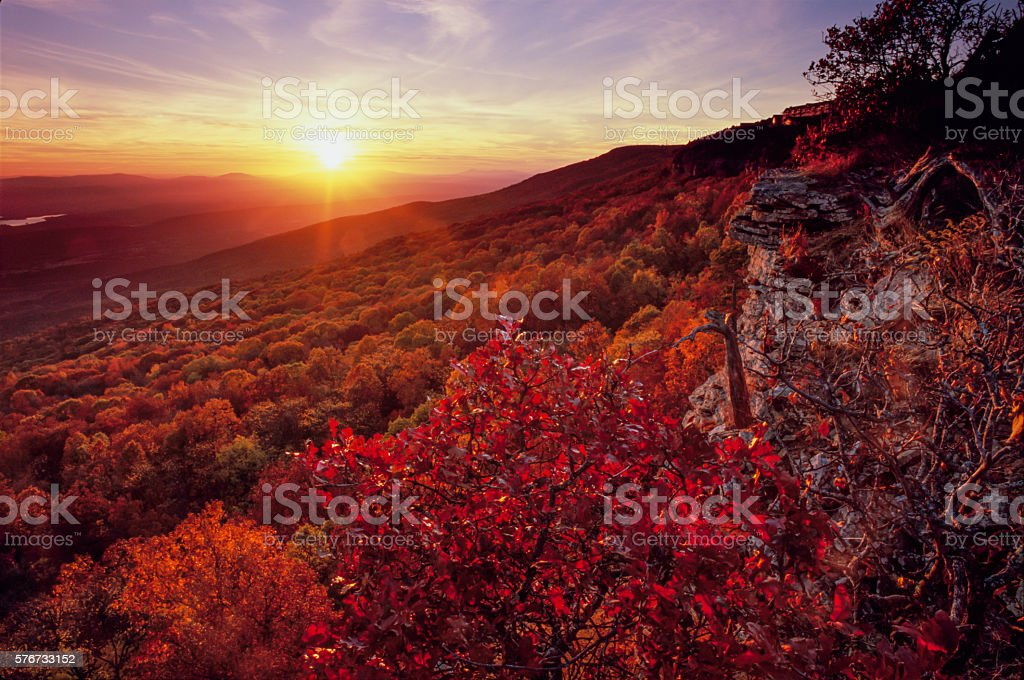 Blackjack Oak, South Bluff, Mount Magazine stock photo