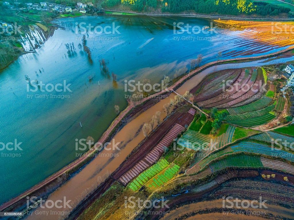 Black-necked crane reserves,Nianhu lake, Yunnan province,China stock photo