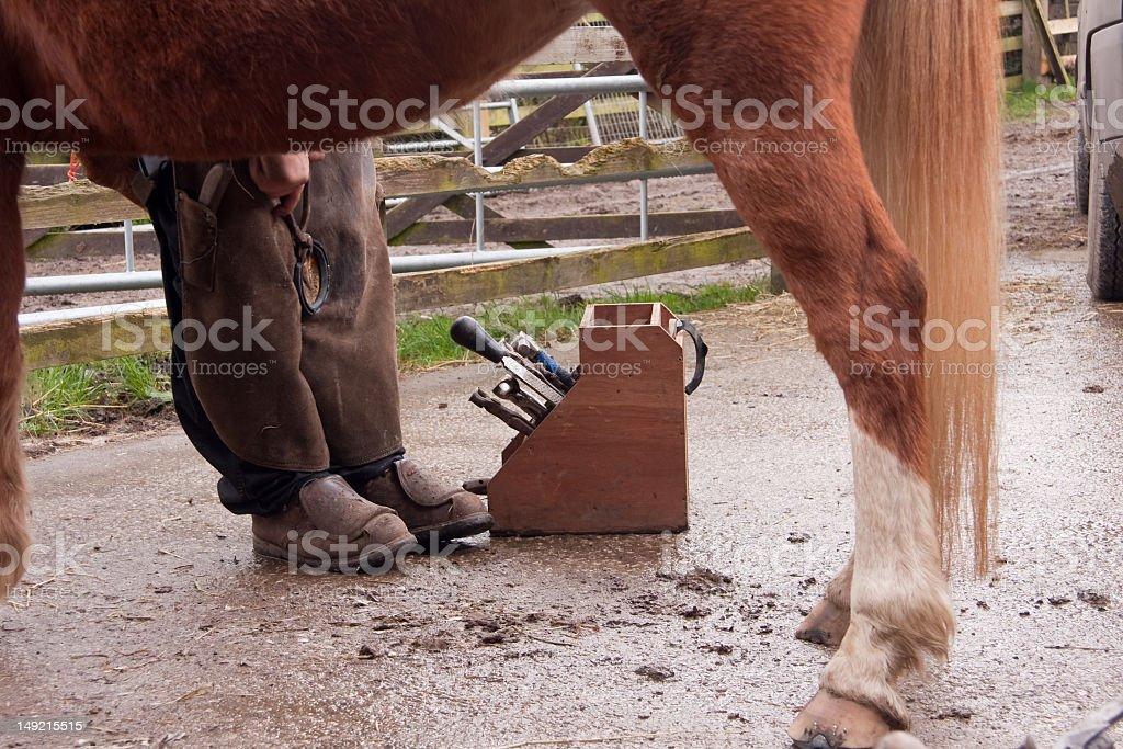Blacksmith shoeing a horse. royalty-free stock photo