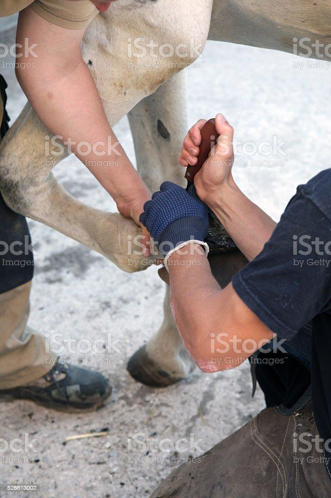 Blacksmith working on horseshoe stock photo