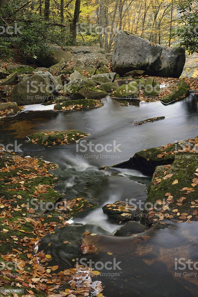 Blackwater Falls State Park in Fall stock photo