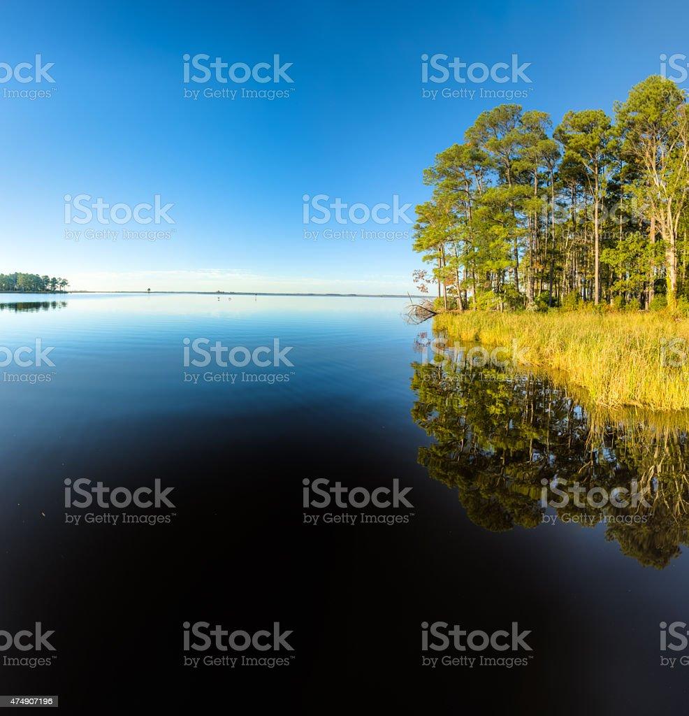 Blackwater National Wildlife Refuge Reflections stock photo