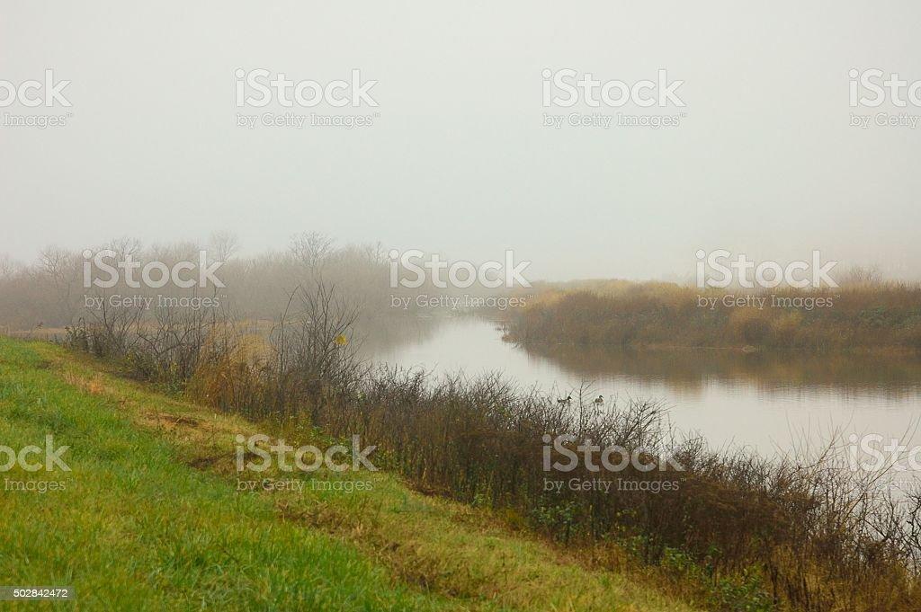 Blackwater NWR Landscape stock photo