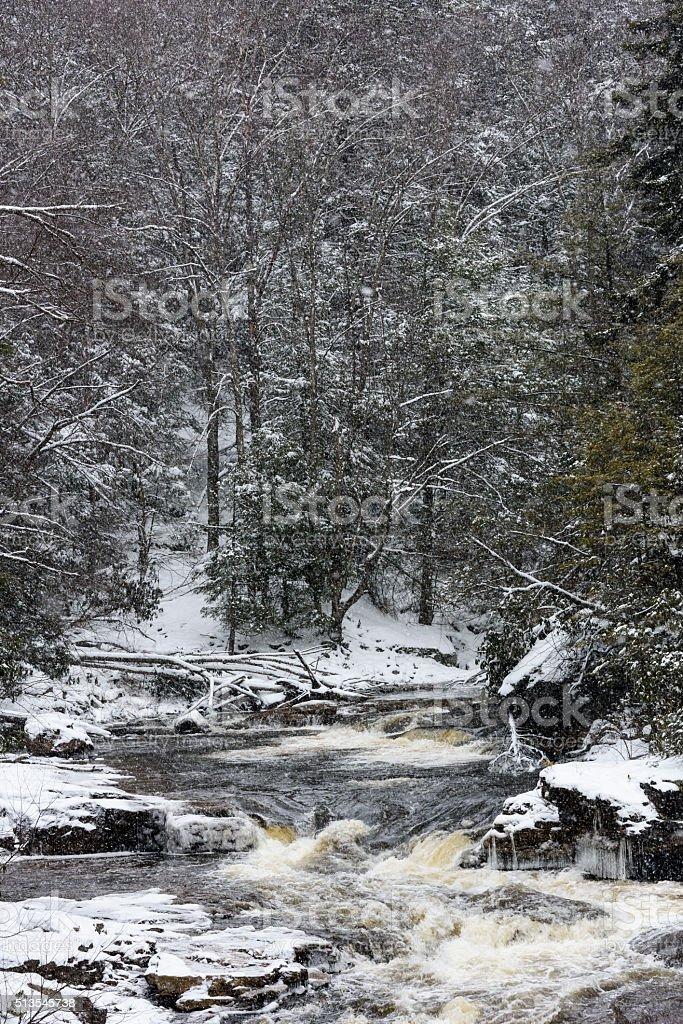 Blackwater River in Winter stock photo