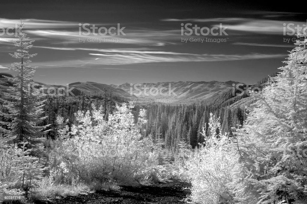 Black&White InfraRed Landscape 3 royalty-free stock photo