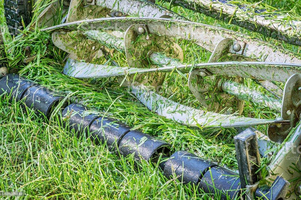 blades hand lawn mower stock photo