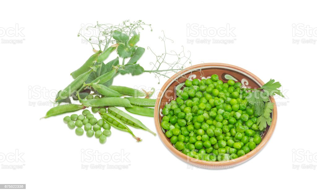 Blanched green peas in bowl, pea pods and branch stock photo