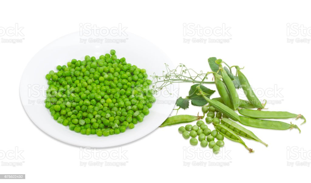 Blanched green peas in white dish, pea pods and branch stock photo