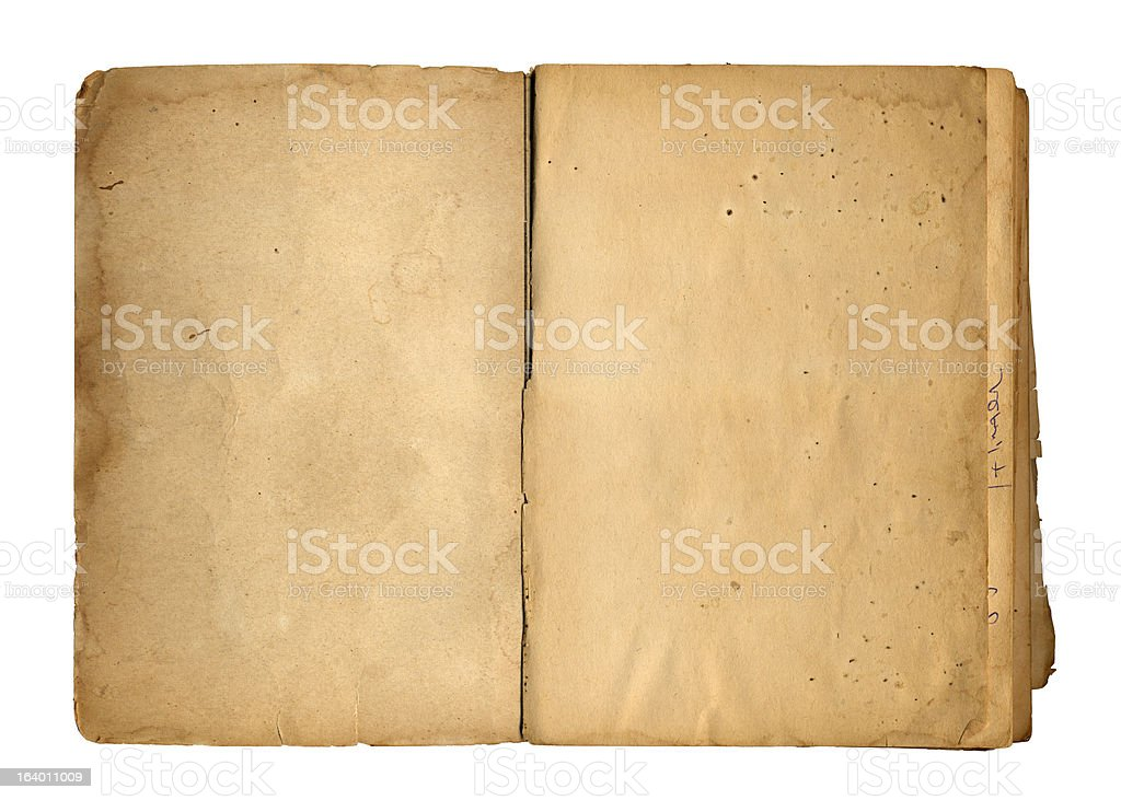 Blank Ancient Book stock photo