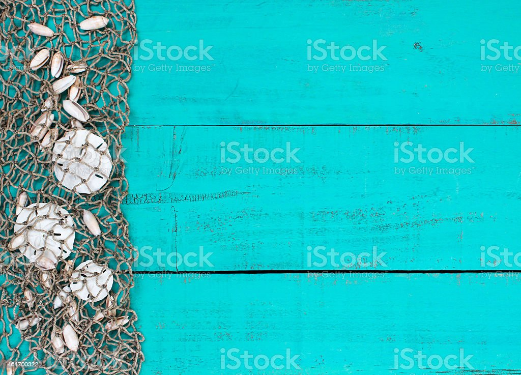 Blank blue sign with sand dollars in fish net stock photo
