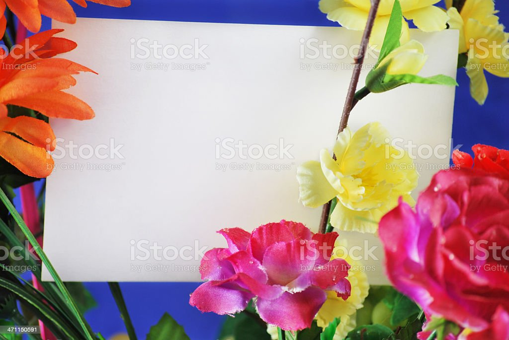 Blank card and flowers royalty-free stock photo