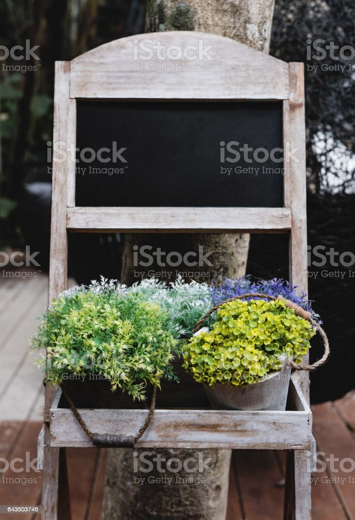Blank chalkboard with flower pots stock photo