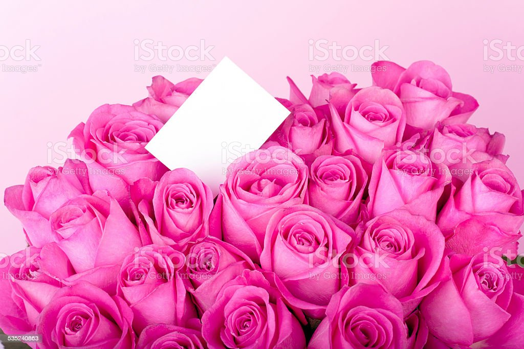 Blank message card and pink roses stock photo
