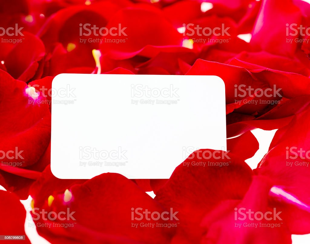 Blank note and red rose petal stock photo