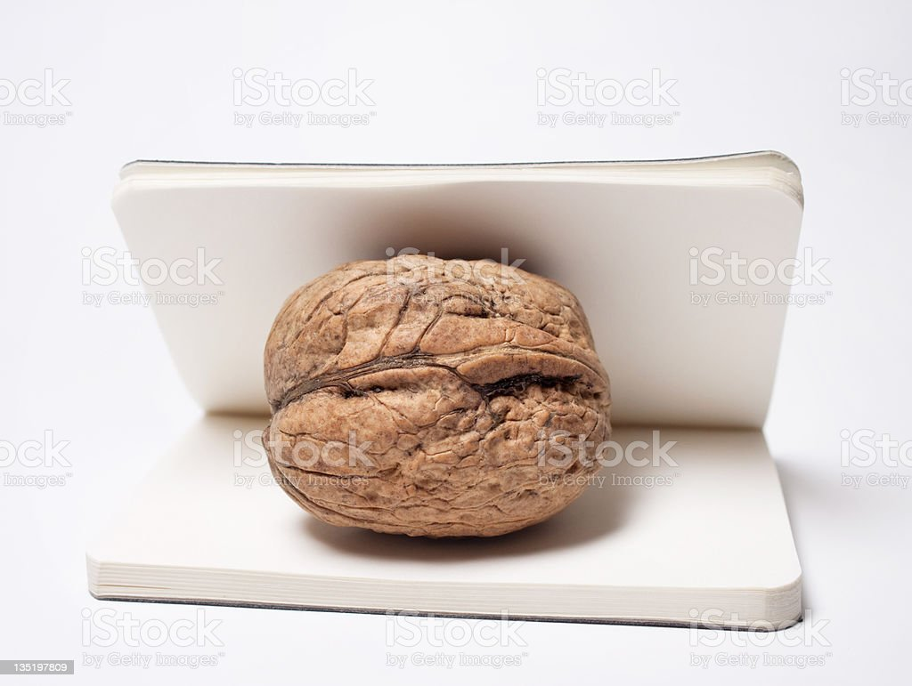 Blank  note book and walnut royalty-free stock photo