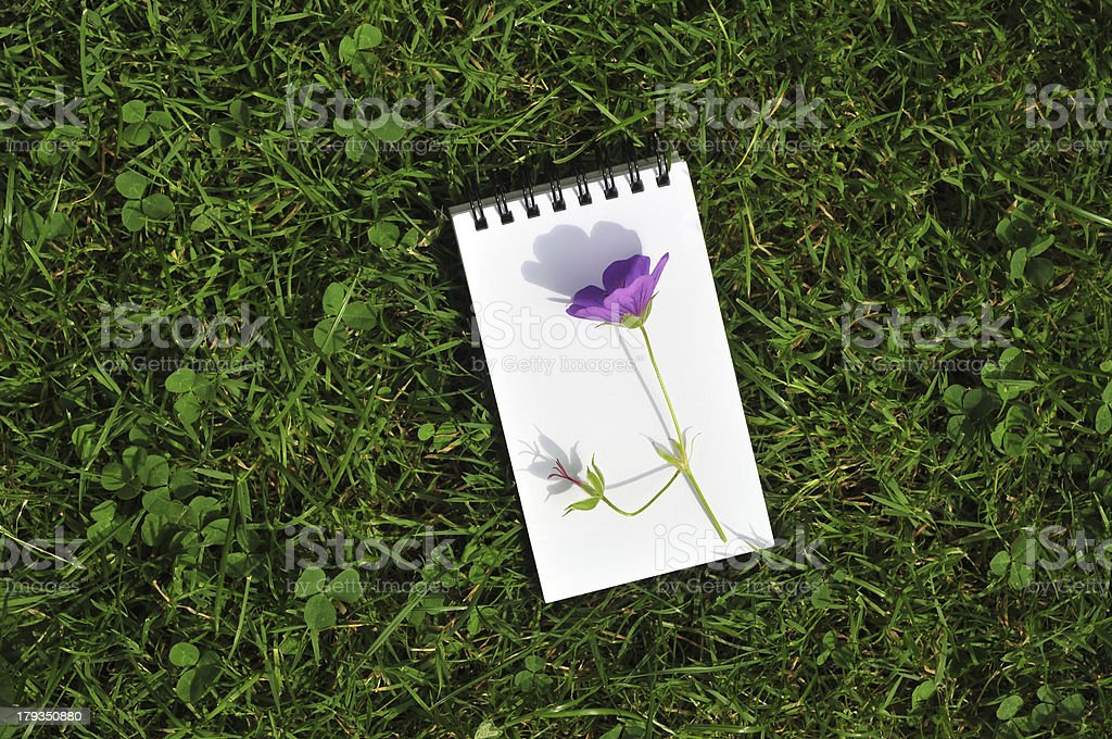 blank notepad with violet flower on grass field royalty-free stock photo