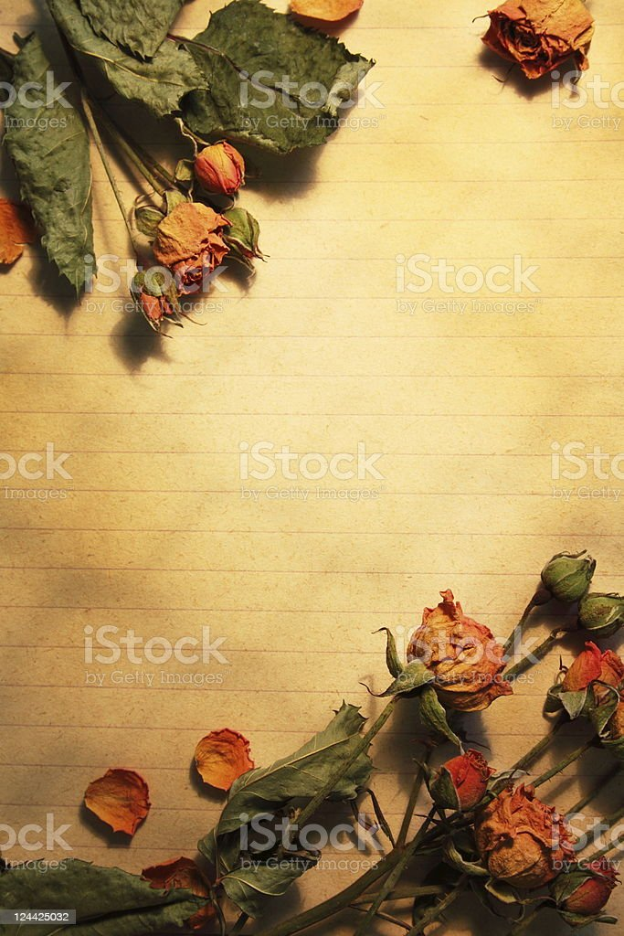 Blank of paper and  flowers royalty-free stock photo