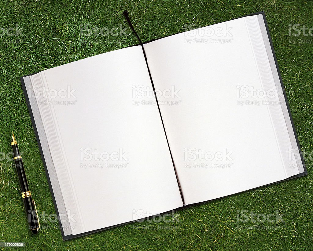 blank opened book royalty-free stock photo