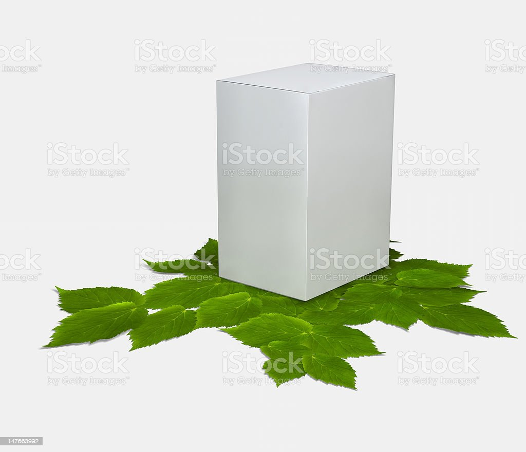 Blank package and green leaves royalty-free stock photo