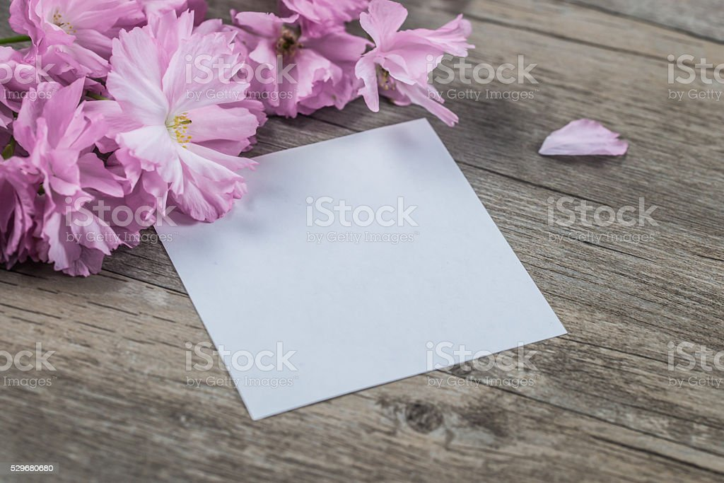 blank paper and petals on wooden table stock photo