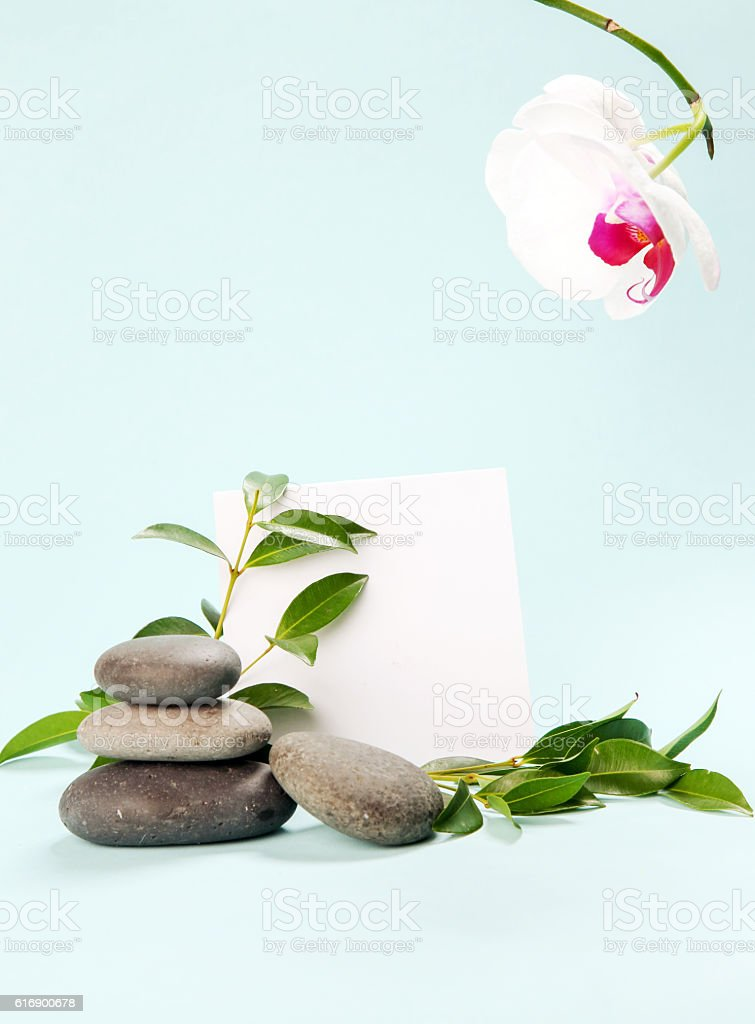 Blank paper surraunded by spa still life stock photo