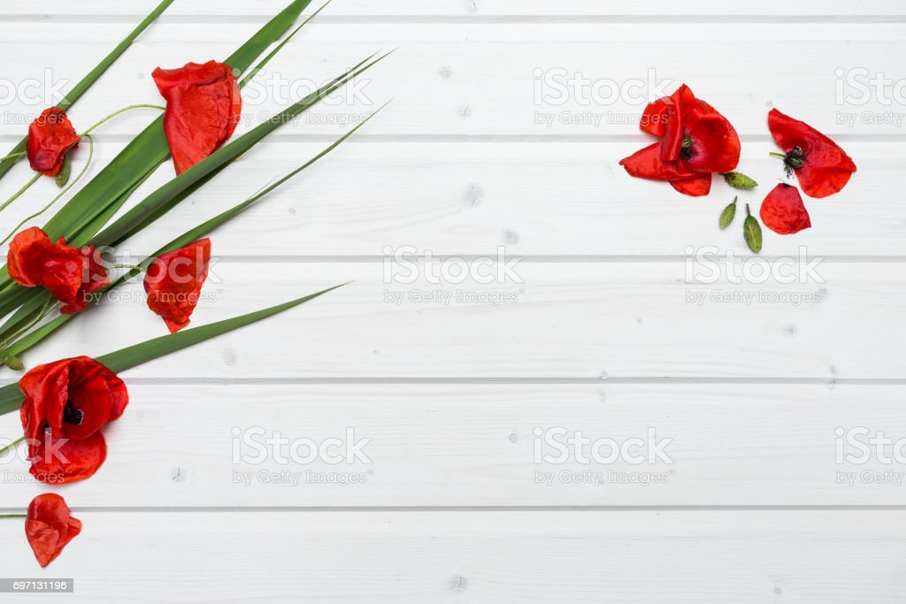 Blank ship deck tabletop scene with poppies stock photo