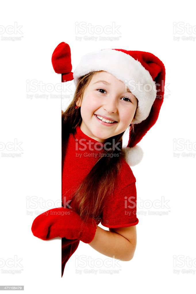 Blank sign - Christmas royalty-free stock photo