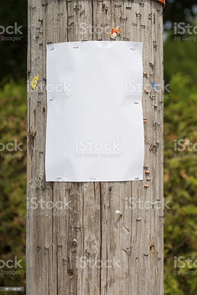 blank sign on telephone pole stock photo
