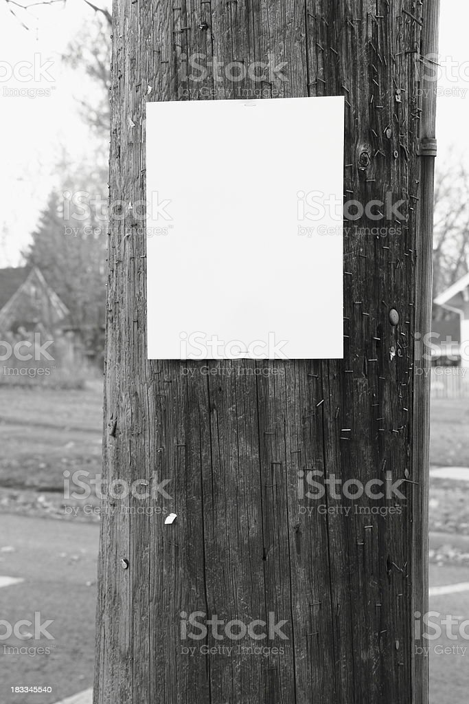 Blank Sign on Telephone Pole (black and white) stock photo