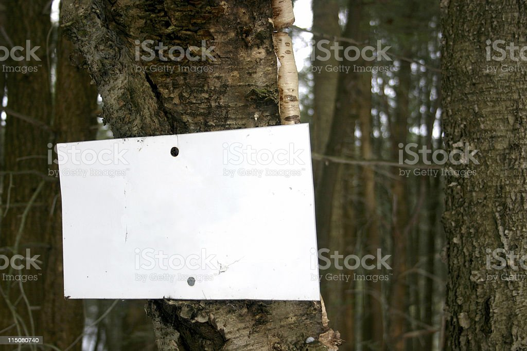 Blank sign on tree royalty-free stock photo