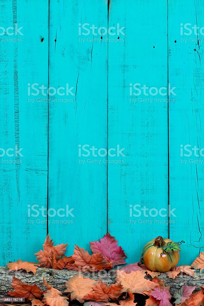Blank sign with fall decor stock photo