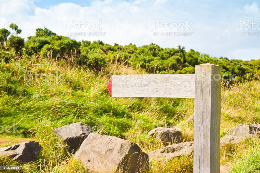Blank signpost indicating a path for trekking in nature stock photo
