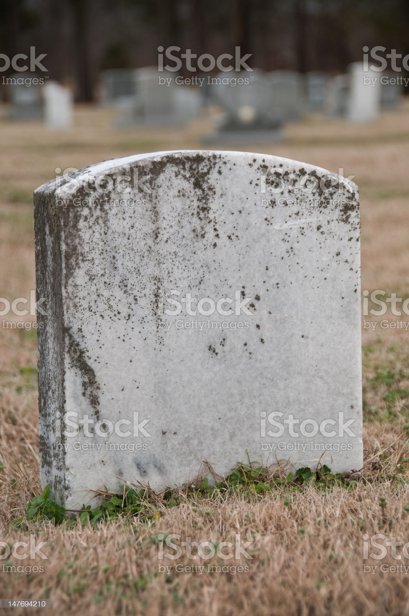 Blank Tombstone royalty-free stock photo