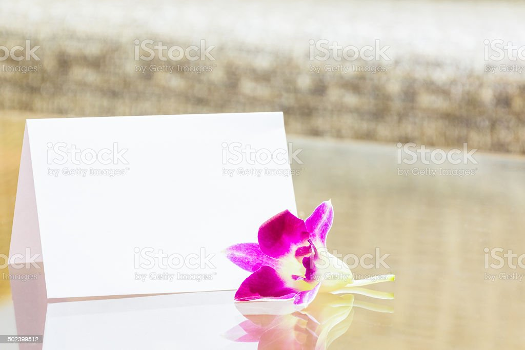 Blank white card and orchids stock photo