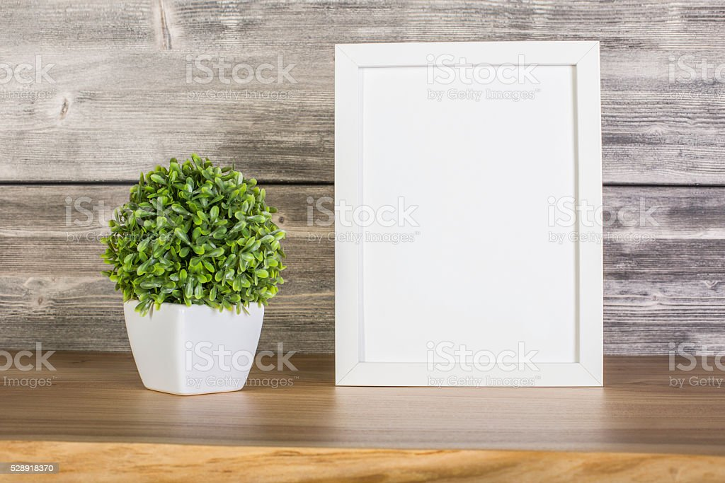 Blank white frame and plant stock photo