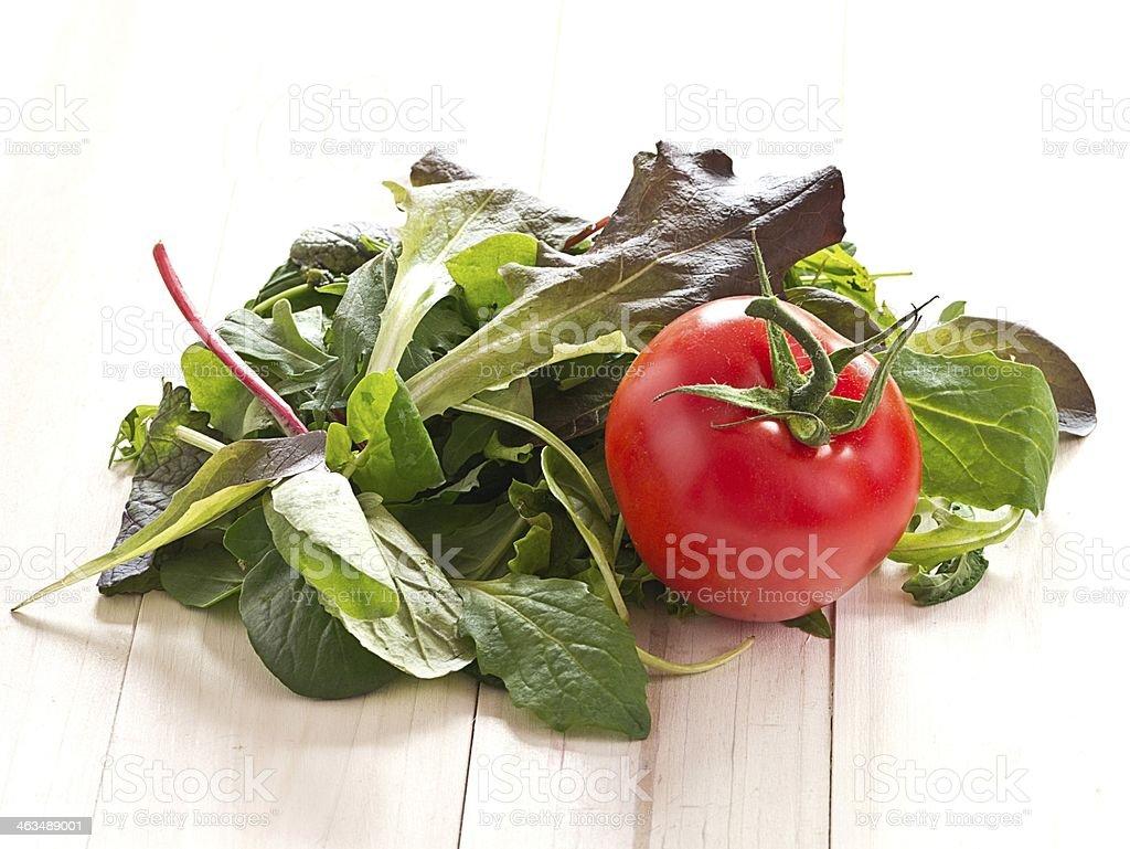 Blattsalat mit einer Tomate stock photo
