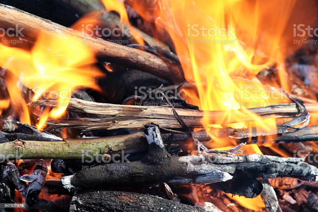 Blazing campfire stock photo