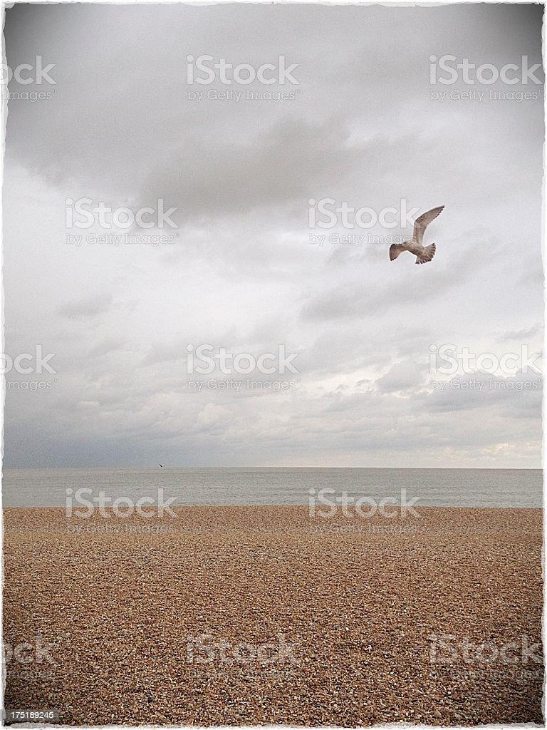 Bleak British Beach stock photo