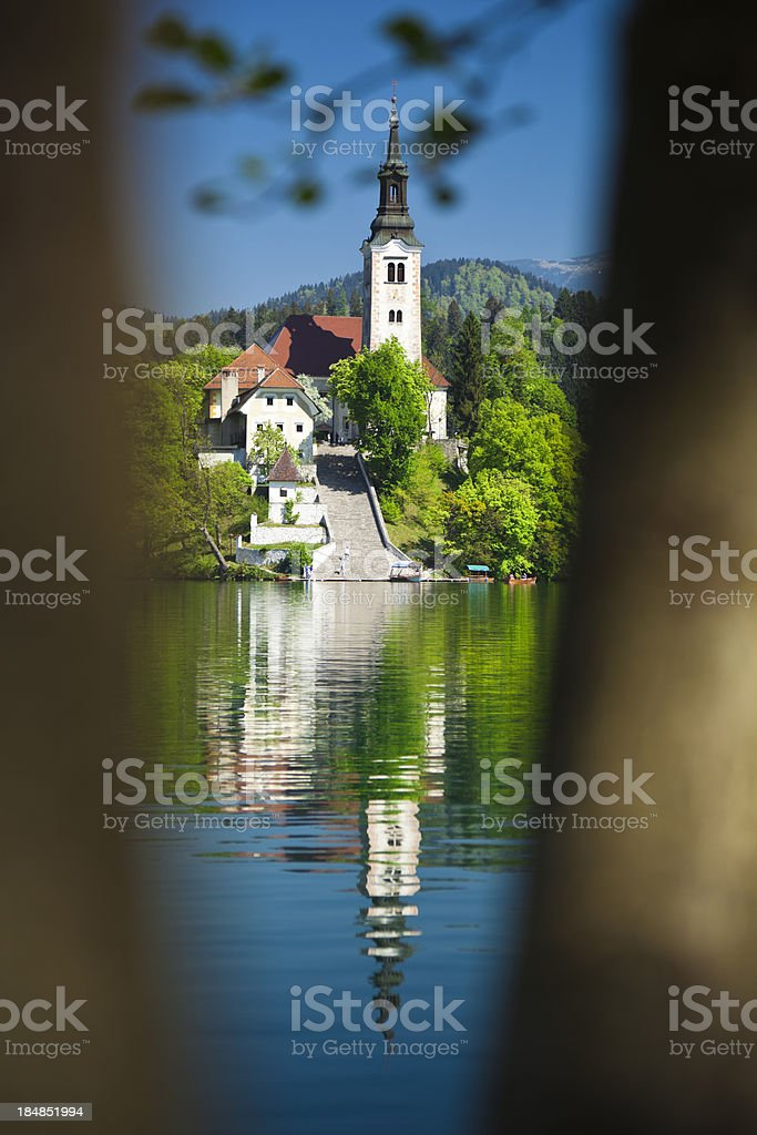 bled stock photo
