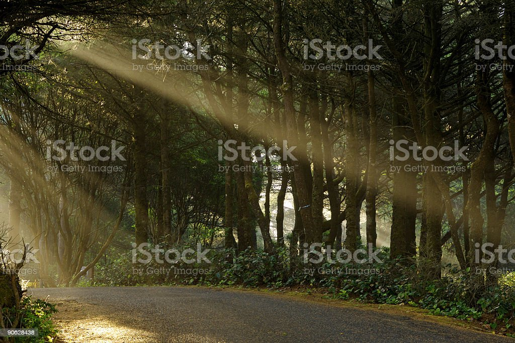 Blessed Road royalty-free stock photo