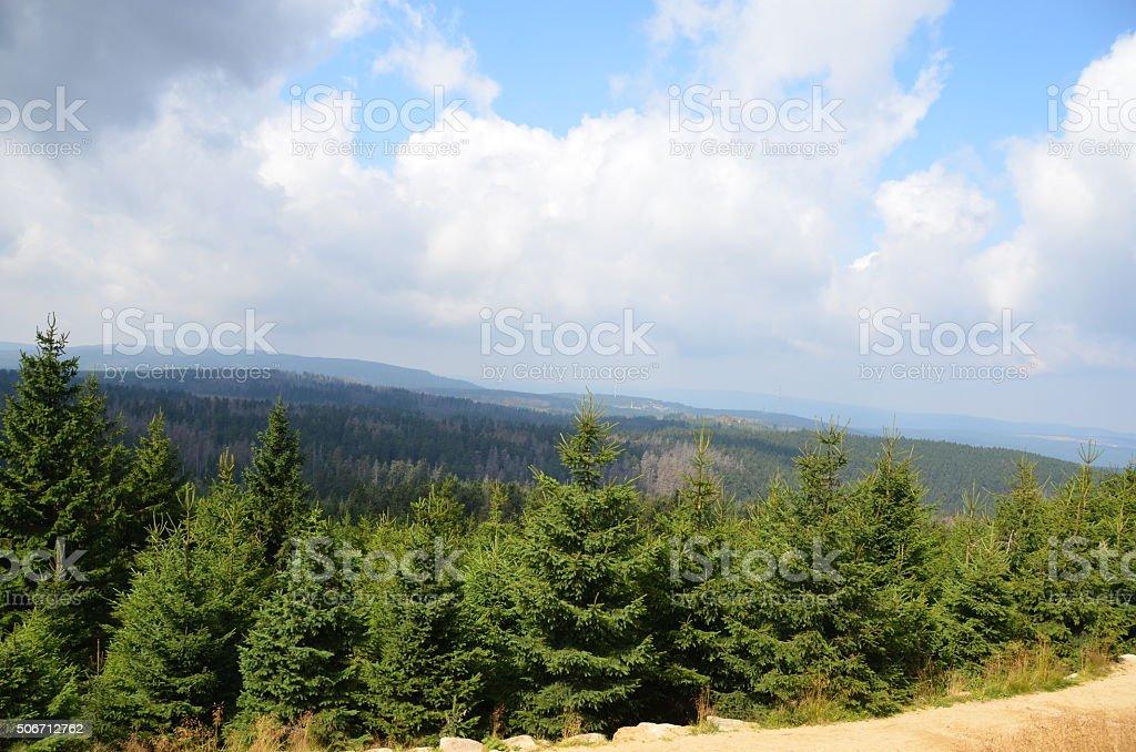 Blick über den Harz stock photo