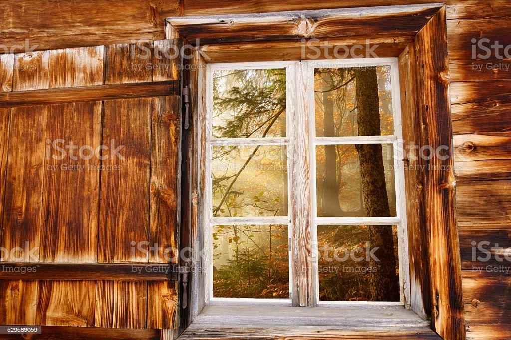 Blick durch das Holzfenster in den Herbstwald stock photo