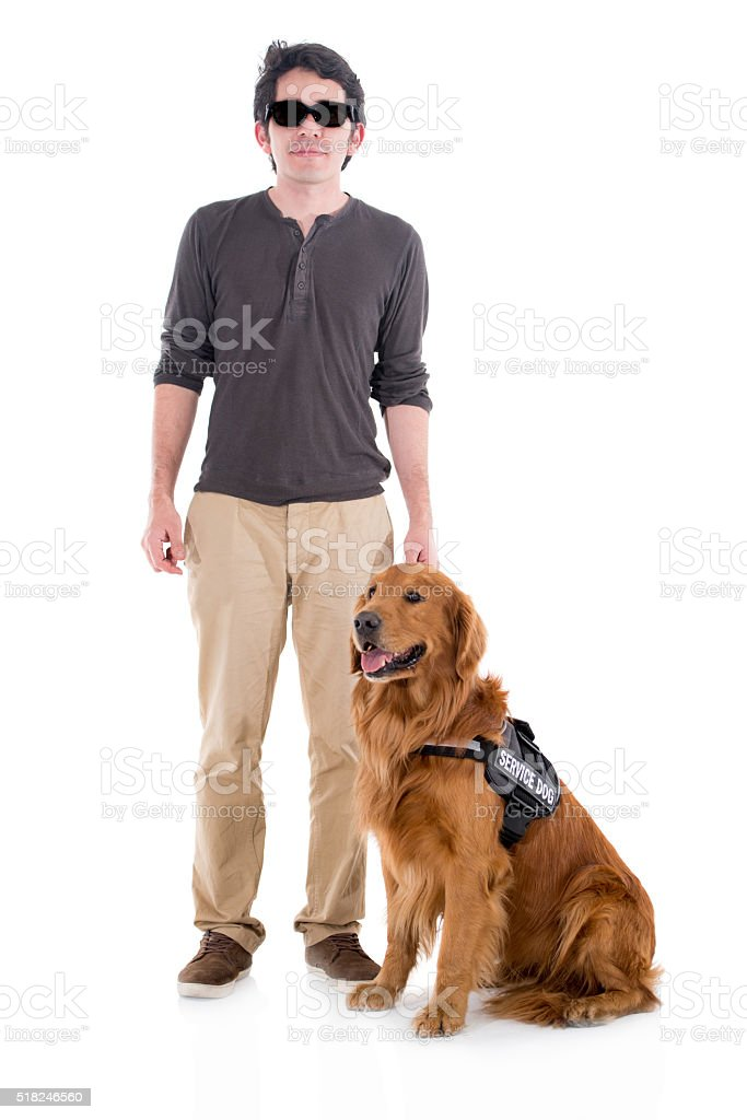 Blind man with a service dog stock photo